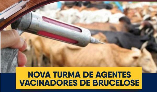 Curso de Agentes Vacinadores de Brucelose