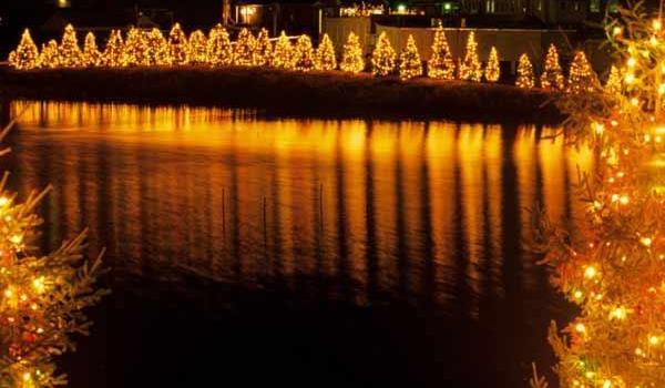 Venha acender conosco as luzes do Natal dos Sonhos